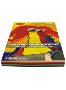 Carton color asortat set 100 A4 Daco
