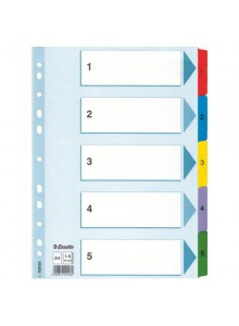 SEPARATOARE INDEX CARTON 1-10 MYLAR ESSELTE